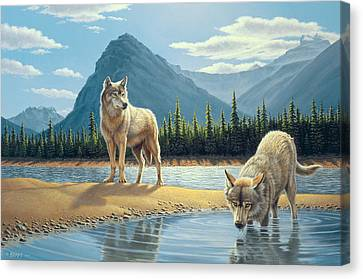 Pause For A Drink-wolves Canvas Print by Paul Krapf
