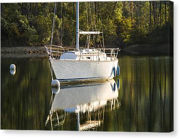 Canvas Print featuring the photograph Pause by Randy Wood