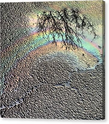Pavement Rainbow  Canvas Print