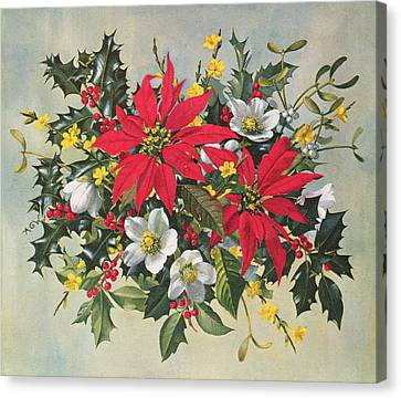 Holly Berry Still Life Canvas Print - Christmas Flowers by Albert Williams