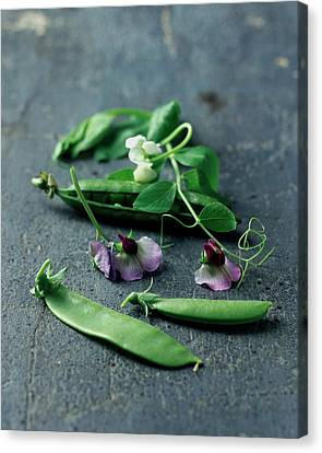 2001 Canvas Print - Pea Pods And Flowers by Romulo Yanes