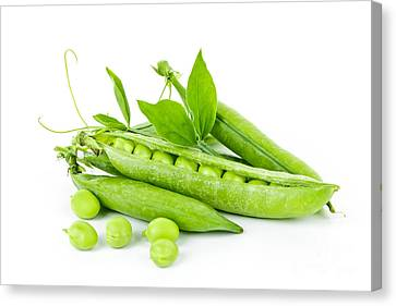 Pea Pods And Green Peas Canvas Print