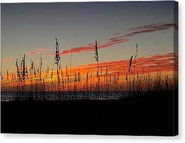 Canvas Print featuring the photograph Peace And Love by Melanie Moraga