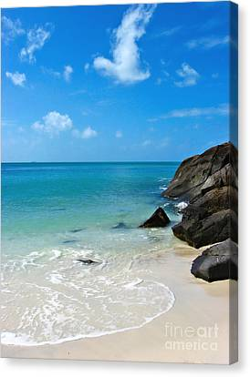 Peace At Whitehaven Canvas Print by Nicole Doyle