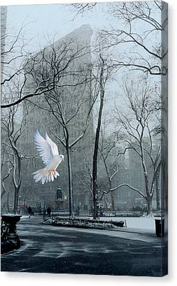 Peace Canvas Print by David Klaboe
