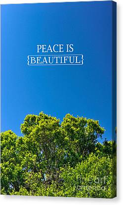 Peace Is Beautiful Canvas Print by Liesl Marelli