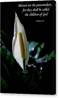 Peace Lily Canvas Print by Deena Stoddard