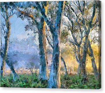 Peace Of Nature Canvas Print by Georgiana Romanovna