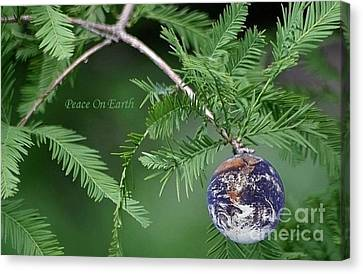 Peace On Earth Canvas Print by Living Color Photography Lorraine Lynch