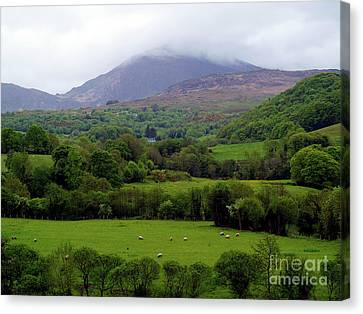 Peace On The Emerald Isle Canvas Print by Patricia Griffin Brett