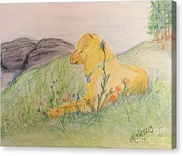 Peace On The Mountainside Canvas Print