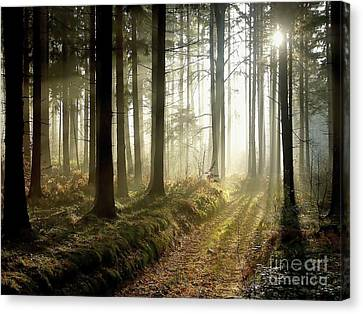 Canvas Print featuring the photograph Peaceful by Boon Mee
