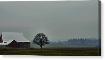 Peaceful Country Morning Canvas Print by Don Schwartz