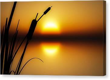 Peaceful Dawn Canvas Print by Bob Orsillo