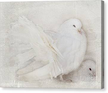 Peaceful Existence White On White Canvas Print by Barbara McMahon