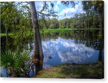Peaceful Florida Canvas Print by Timothy Lowry
