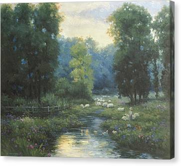 Peaceful Canvas Print by Ghambaro