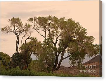 Peaceful Canvas Print by Kathleen Struckle