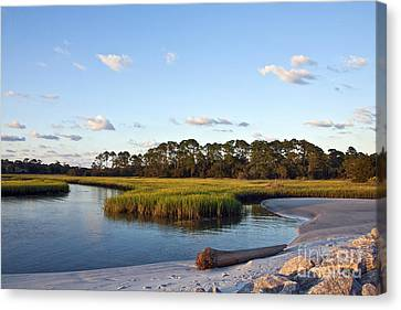 Canvas Print featuring the photograph Peaceful Marsh by Paula Porterfield-Izzo