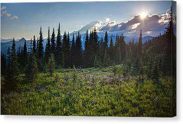 Peaceful Mountain Flowers Canvas Print by Mike Reid