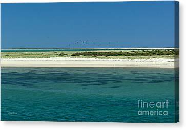 Peaceful Nantucket Canvas Print by Michelle Wiarda