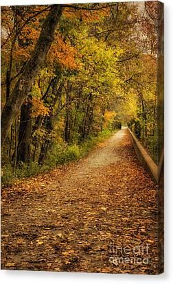 Peaceful Pathway Canvas Print by Cheryl Davis