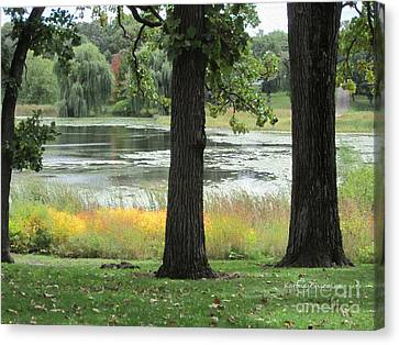 Peaceful Water Canvas Print by Kathie Chicoine