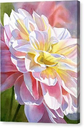 Peach And Yellow Dahlia Canvas Print by Sharon Freeman