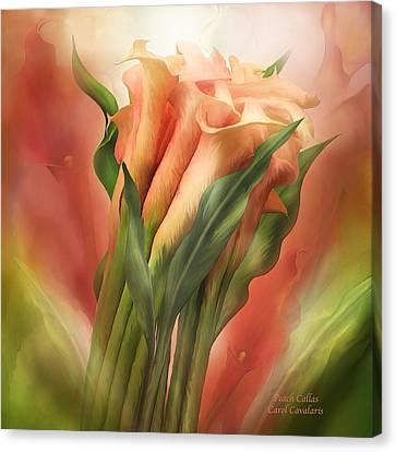 Peach Callas Canvas Print by Carol Cavalaris