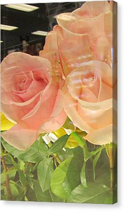 Peach Roses In Greeting Card Canvas Print