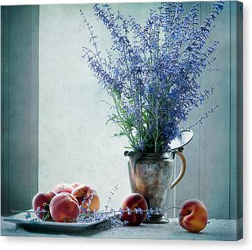 Peaches And Blues Canvas Print