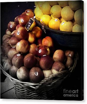Peaches And Lemons Antique Canvas Print by Miriam Danar