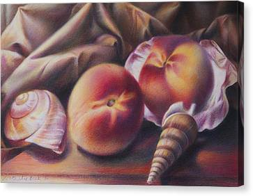 Peaches And Seashells Canvas Print by Nathalie Beck