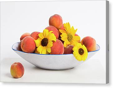 Peaches And Sunflowers Canvas Print by Diane Macdonald