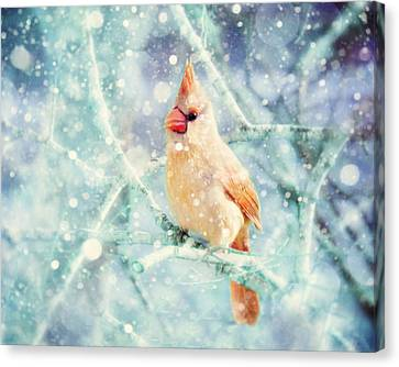 Peaches In The Snow Canvas Print by Amy Tyler
