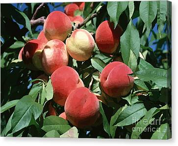 Peaches On Tree Canvas Print by Lanjee Chee