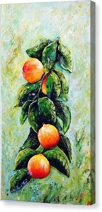 Peachy Day Canvas Print