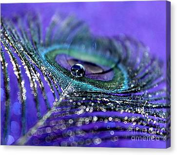 Peacock Spirit Canvas Print