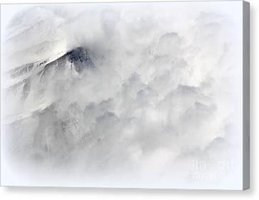Peak A Boo Canvas Print