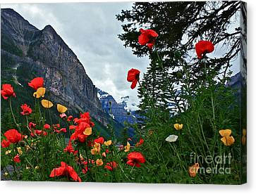 Canvas Print featuring the photograph Peaks And Poppies by Linda Bianic