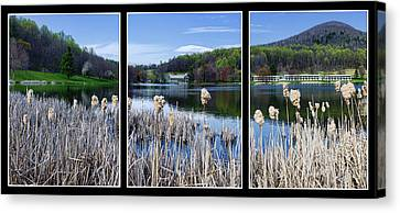 Peaks Of Otter Lodge Triptych Canvas Print by Steve Hurt