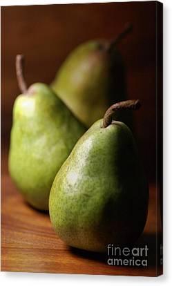 Pear Delight Canvas Print by Joy Watson