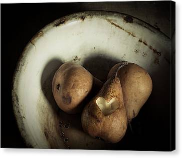 Pear Love Canvas Print by Amy Weiss