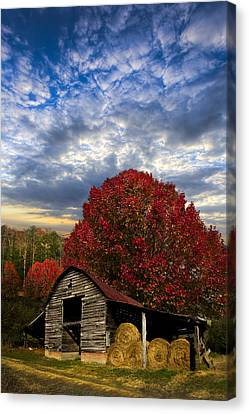 Bales Canvas Print - Pear Trees On The Farm by Debra and Dave Vanderlaan