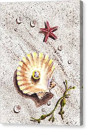 Pearl In The Seashell Sea Star And The Water Drops Canvas Print
