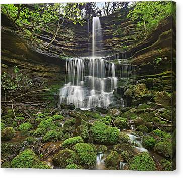 Pearly Springs Waterfall Buffalo Canvas Print by Tim Fitzharris