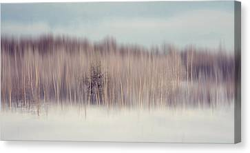 Pearly Winter. Impressionism Canvas Print by Jenny Rainbow
