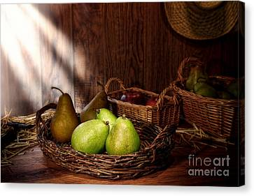 Farm Stand Canvas Print - Pears At The Old Farm Market by Olivier Le Queinec