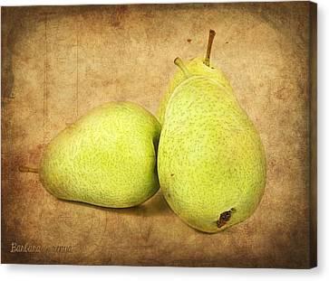 Pears Canvas Print by Barbara Orenya