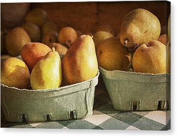 Farm Stand Canvas Print - Pears by Caitlyn  Grasso
